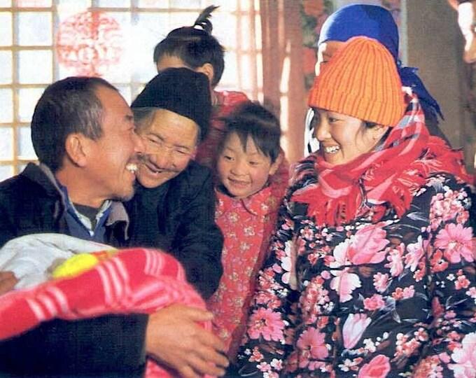 Story of Qiu Ju   90s Chinese Classic, Zhang Yimou, Gong Li   1993 print   vintage Japanese chirashi film poster