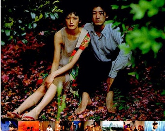 Hakuchi: the Innocent | 90s Japan Cinema, Tadanobu Asano, Macoto Tezka | 1999 print | Japanese chirashi film poster