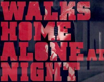 A Girl Walks Home Alone at Night | Iranian Vampire Horror, Ana Lily Amirpour | 2015 original print | Japanese chirashi film poster