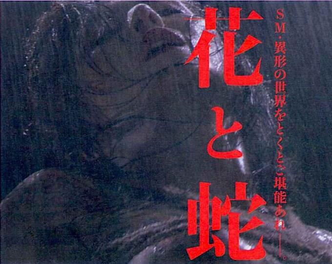 Flower and Snake   Erotic Japan Cinema, Takashi Ishii   2004 original print   Japanese chirashi film poster