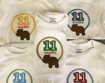 Monthly baby onesies  12 months.  Machine Embroidered.