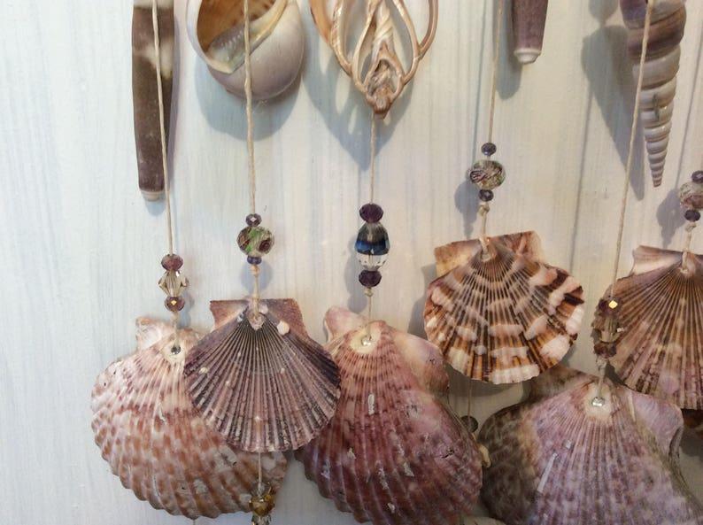 Handmade exotic seashell windchimes