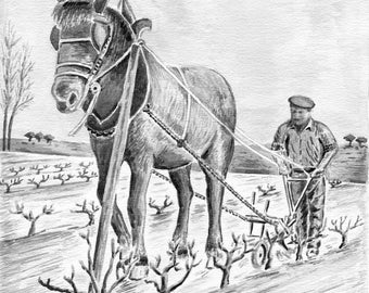 Limited number REPRODUCTION of my original watercolor: vine farmer.