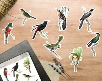 Vintage Bird Stickers | BUJO Stickers | Planner Stickers