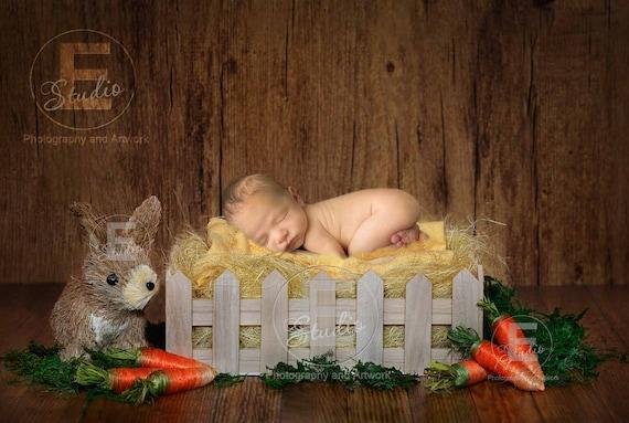 2 NEWBORN DIGITAL BACKGROUNDS Newborn Digital backdrop Newborn template