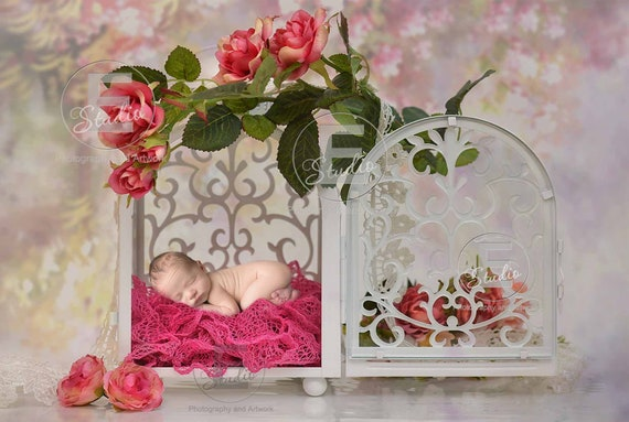 spring EGG newborn digital backgroundflower newborn digital backdropinstant download