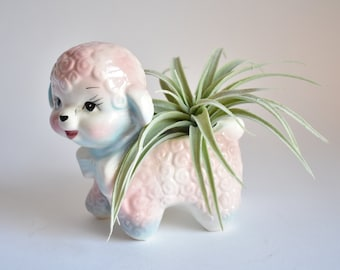 Kitsch Planter Poodle   Air Plant House Plant Pot   Gift for Baby Shower   Blue Pink Cute Sweet Puppy Dog   Birthday Gift   Retro Vintage