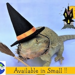 Witch Hat Halloween Costume for Bearded Dragon and Gecko or other Reptile or Pet