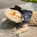 Cowboy / Cowgirl Bearded Dragon Costume Brown Cowboy/Cowgirl Hat Blue Bandana Bearded Dragon Attire Cowboy Costume reptile lizard