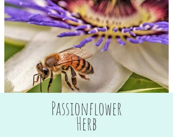 Organic Passion Flower Herb BIRBS: Herbs for Birds (and other pets) Herbal Pet Apothecary Ingredients .3oz packet