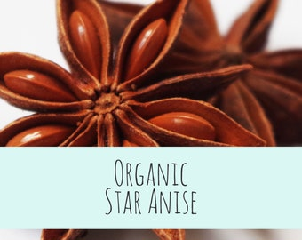 Organic Star Anise - BIRBS: Herbs for Birds (and other pets) Herbal Pet Apothecary Ingredients 1.5 oz packet