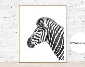 Zebra Print, Zebra Wall Art, Zebra Decor, Zebra Photography, Animal Print, Safari Print, Safari Photography, Black and White, Zebra Poster