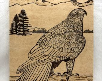 Wood Burned Falcon