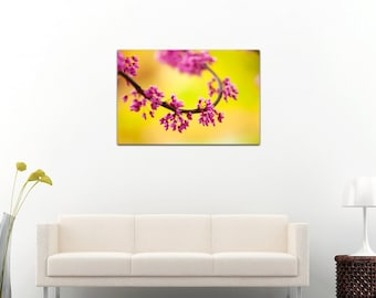 Single white flower blossom from multiple blossoms blooming etsy beautiful spring colors photography printed on canvas pink blooming blossoms flowers garden summer sunny day 8x12 16x24 24x36 mightylinksfo