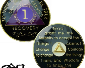 AA 14K Gold Plated 1 Year Recovery Clean Time Birthday Medallion Sealed With Epoxy For A Shiny Glossy Look, AA Coin | Simply Minimal™