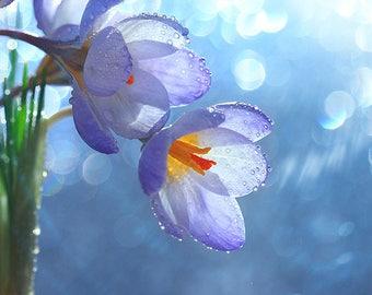 ORIGINAL design, WASHABLE and durable TABLE SET - flowers - Spring Awakening 21.