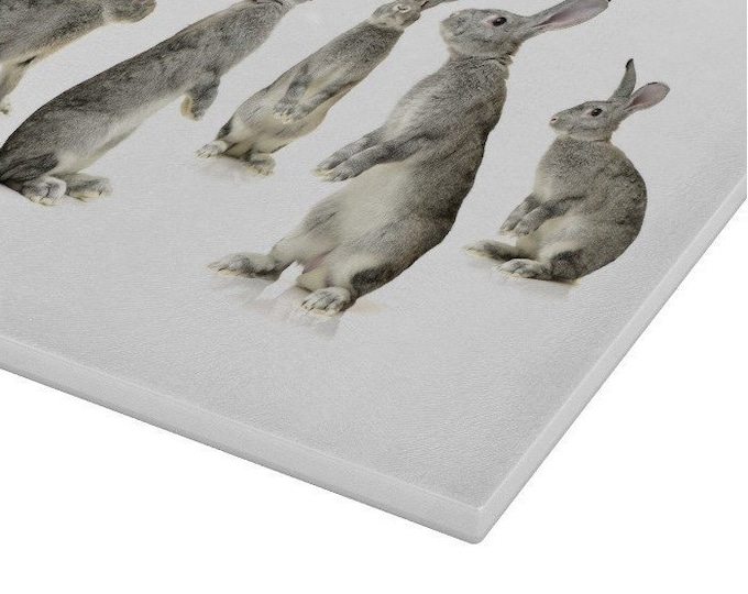 Baby Rabbit Glass Chopping Board | Worktop Saver