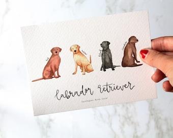 Labrador Retriever A6 Postcard, A5 Print