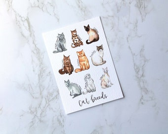Cat Breed Print, Watercolour Cat Breeds, Top Cats of the UK, A6 and A5 Postcard