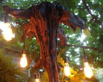 Handmade driftwood light fixture FREE SHIPPING