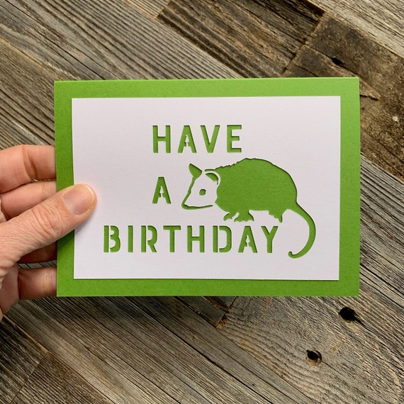 Have A Possum Birthday Have A Opossum Birthday Awesome Etsy