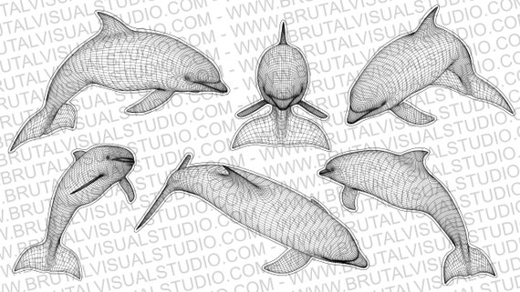 Dolphin in Wireframe - True vector source - Ideal for CNCs and Laser Cutters - 6 poses in .eps, .svg, .jpg, .png, .dpp - Great for led lamps