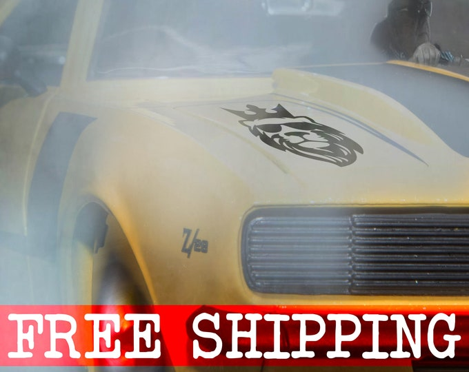 Lion, The King With Sunglasses - How epic is this? Vinyl Sticker, Decal, Drift, Race, MotorSports Decals, Car decals