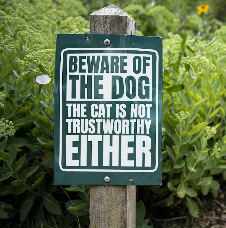 SVG  Beware of the dog // The cat is not trustworthy either image 0
