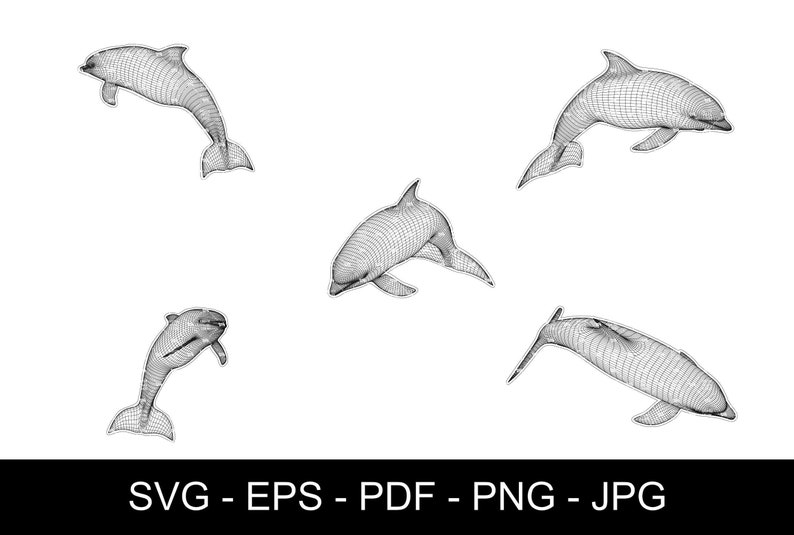 SVG  Dolphin in Wireframe // True vector source // Ideal for image 0