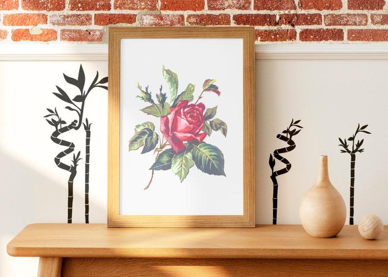 SVG  Ornamental Interior Plants // eps pdf psd dxf jpg png image 0