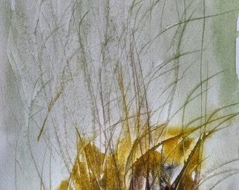 watercolour,flower, Teesdale, original,painting, landscape