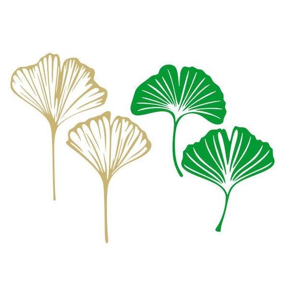 Ginkgo Leafs Palm Cuttable Design Svg Png Dxf Eps Designs Etsy