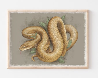 Coiled Snake Reptile Watercolour Illustration Wall Art Print