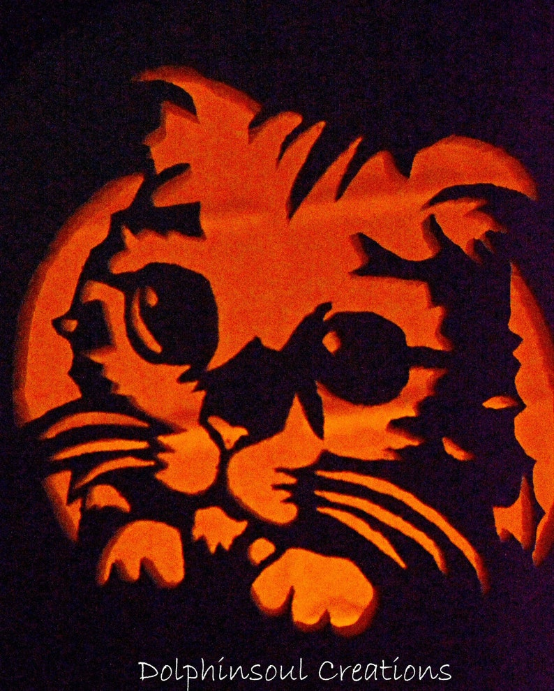 Puss In Boots Big Cat Eyes Halloween Carved Foam Pumpkin