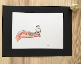 Little bird - drawing - free shipping