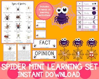Spider Mini Learning Set
