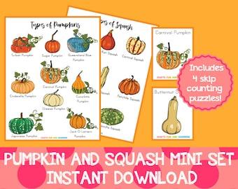 Pumpkin and Squash Mini Set