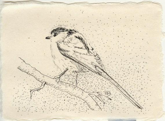 Dessin à La Plume Original Papier Japonais Encre De Chine Oiseau Bird Mésange à Longue Queue Cadeau Ornithologue Birdwatcher Nature