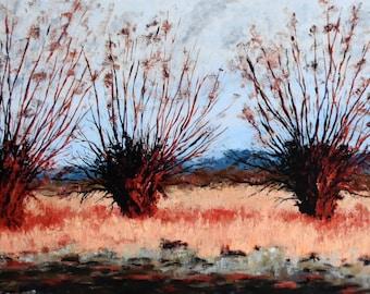 Three Willows No. 1
