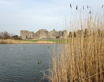 Castle and reeds
