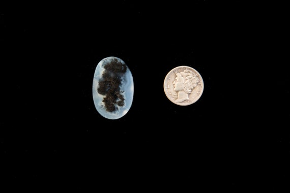 Alpine Moss Agate Cabochon from Texas