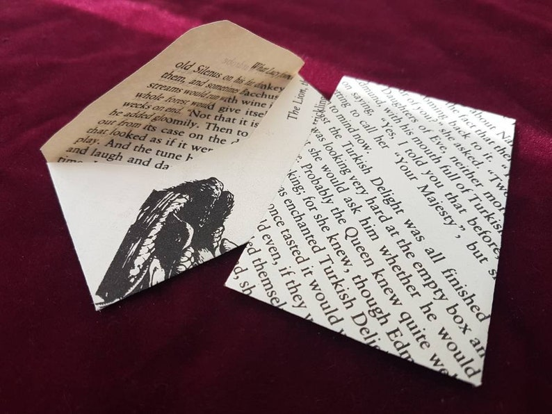 Children/'s Book party supply Book theme place card Literature wedding decor Seed Envelopes Narnia Page Mini Envelopes Quirky wedding