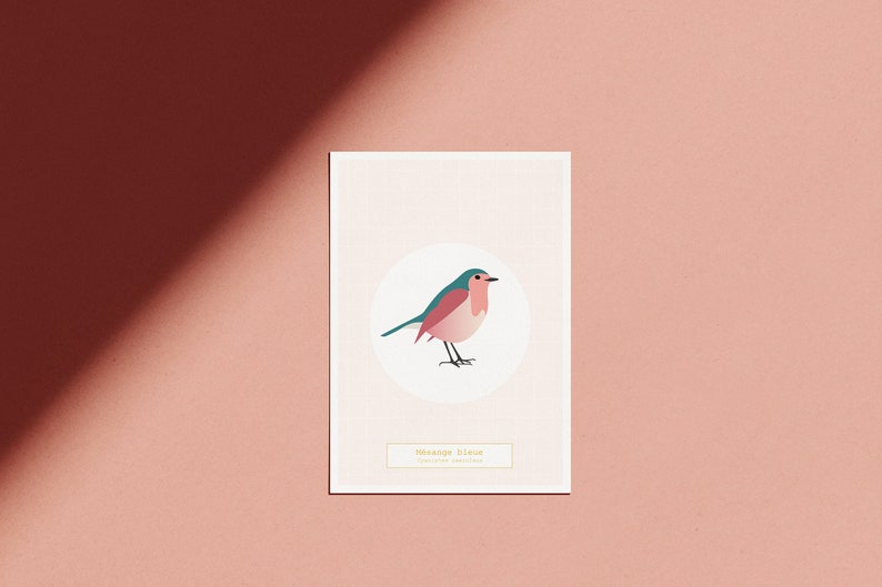 Poster The Bird Room  The Blue  illustrated pink map A5  HD image 0