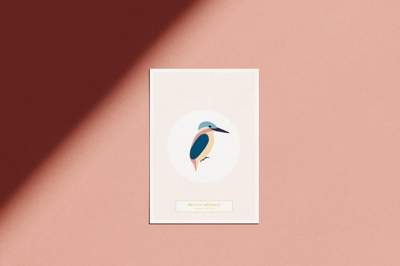 Poster The Bird Room  The Fisherman's Martin  image 0
