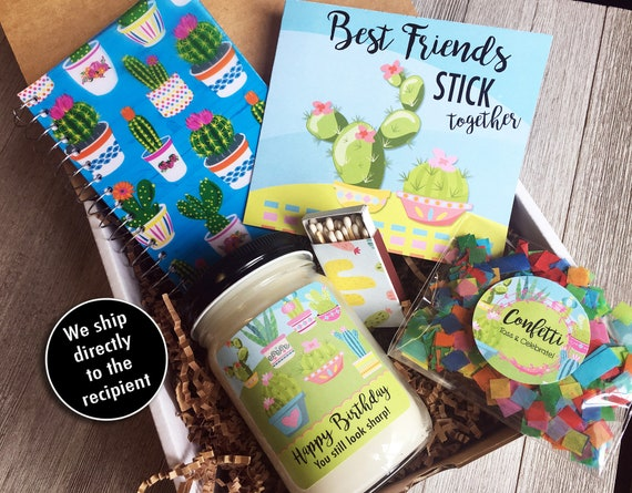 Happy Birthday Gift Box Cactus In A
