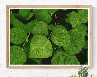 Green Leaves  //  Nature Home Gallery Garden Growth Fresh Design Greenery Emerald Calm Detail Unique Digital Art Spring Plants Gift Light