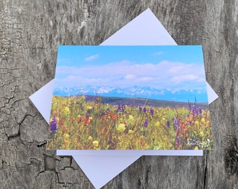 Assorted Ranch Life Note Cards