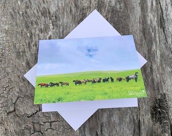 Assorted Horse Note Cards - #1