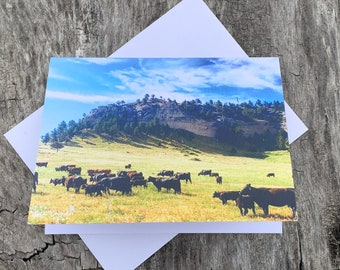 Assorted Cow Note Cards