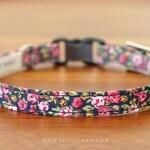 Wild Rose Cat Collar